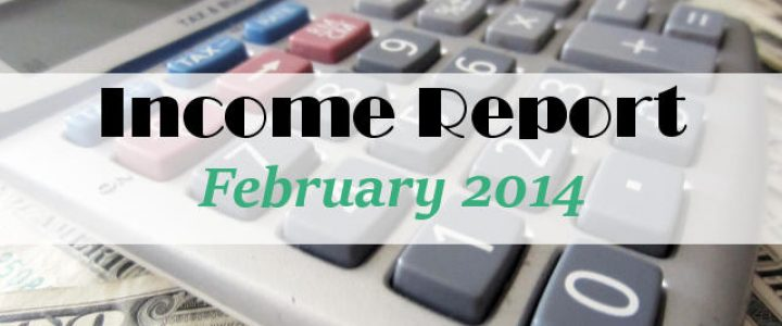 Income Report February 2014